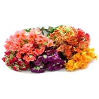 Цветок Z006-4