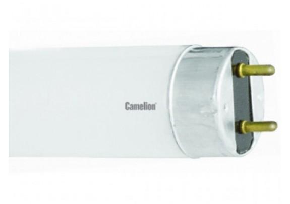T8 люмин. Camelion 30W/54 Dayllight 6500K  /25*