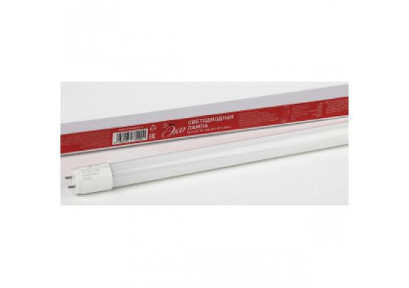 T8 LED10 ЭРА 10W-865-G13-600mm  ECO (хол,непов)