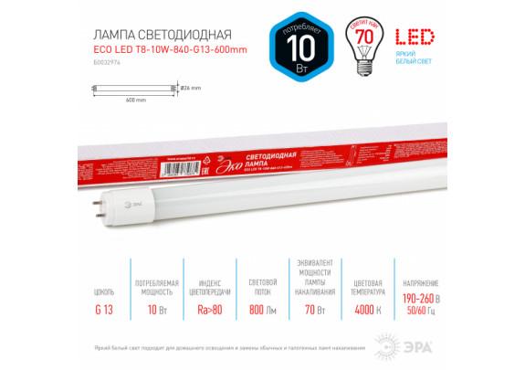 ЭРА LED T8-10W-840-G13-600mm  ECO (хол,непов. G13)