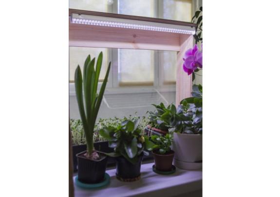 Светильник для растений CAMELION LWL-2014-01CL 8W